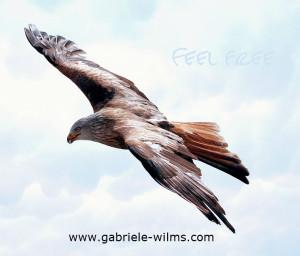 Freiheit - Adler
